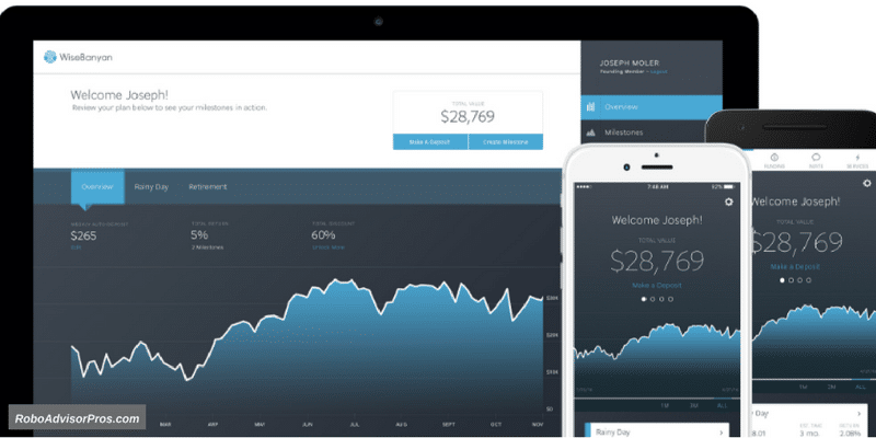 Best WiseBanyan Review - Account Overview Dashboard