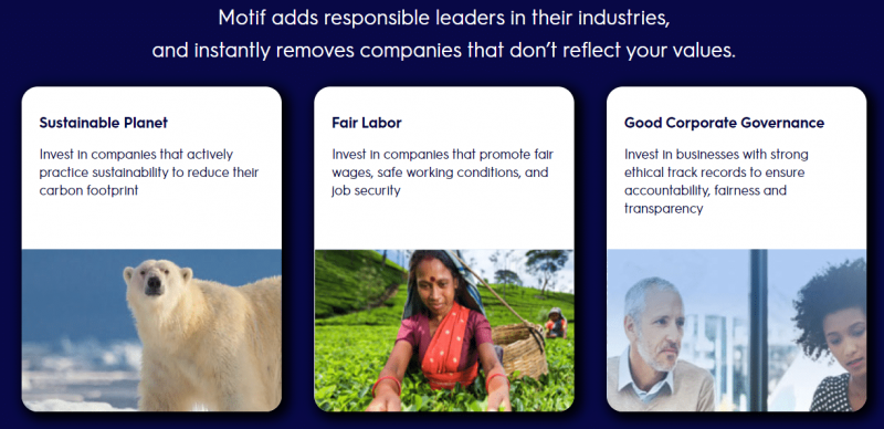 motif review - impact portfolios