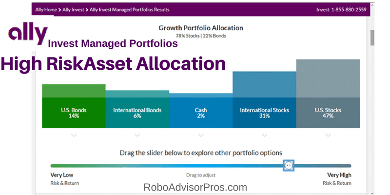 Ally Invest Managed Portfolios High Risk Tolerance Growth Portfolio Asset Allocation